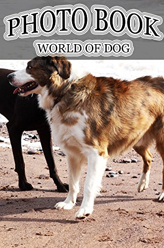 photo-book-world-of-dog-vol38-photography-dog-picture-books-english-edition