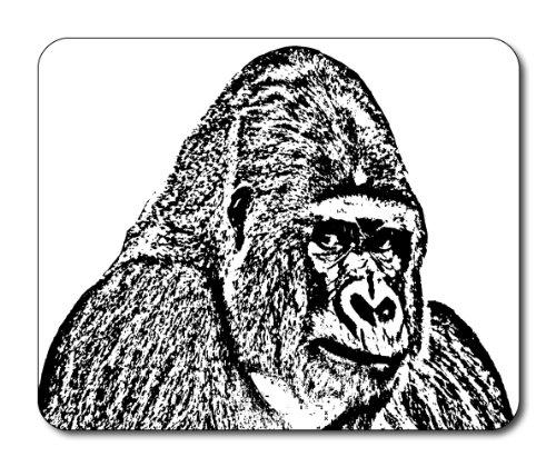 gorilla-del-mouse-wildlife