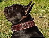 Tysons Breeches  Halsband Leder Grandeur geprägt EDEL Braun Dunkelbraun Lederhalsband genäht Hohe Zugkraft M L XL (M)