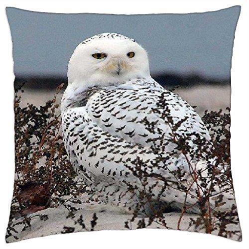 iRocket - Peek-A-Boo - Throw Pillow Cover (24