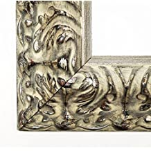 Plata marcos de cuadros Praga 7.2 - 50 x 70/50 x 70 cm - 4 niveles de acabado se puede elegir, vidrio, plata, 50 x 70 cm