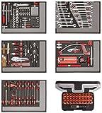 CAROLUS 2250.5801 Werkzeugsatz 222-tlg in Schaumstoffmodulen, 1 Stück