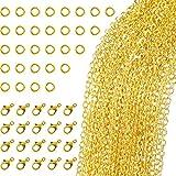 TecUnite 33 Piedi Collana con Catena a Maglia Placcata Oro con 30 Anelli di Salto e 20 Chiusure di Aragosta per Creazione di Gioielli Fai-Da-Te (1.5 mm)