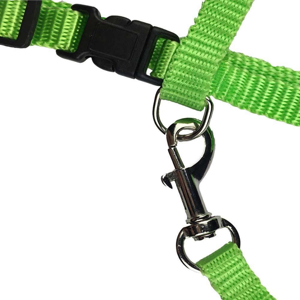 xmelug Nylon Pet Lead Leash Harness Kitten Belt Strap Safety Rope Adjustable Small Cat Dog Collar Red