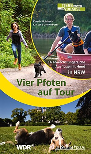 Vier Pfoten auf Tour: 16 abwechslungsreiche Ausflüge mit Hund in NRW