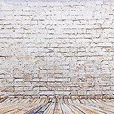 BPS plastique bas Studio Photo pour le portrait 1,5x 0.9m style classique, mur et sol bois, matériel imperméable