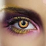 Funky Vision Kontaktlinsen - 12 Monatslinsen, Orange Werewolf, Ohne Sehstärke, 1 Stück