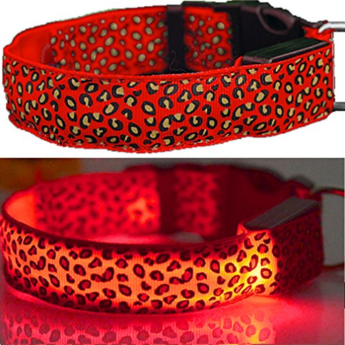 Unbekannt LEUCHTENDES Hunde-Halsband, Größe: M (40-48cm / 2,5cm breit), ROT Leopard-Design, mit Klickverschluß. LED's leuchten und blinken im Dunkeln. (Hundehalsband Leopard)