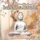 Buddhattitude Tzu Yo