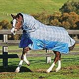 Weatherbeeta Comfitec Premier Free - Coperta medio peso per cavalli con collo staccabile (7 ft - 213 cm) (Grigio)