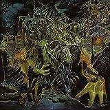 Songtexte von King Gizzard & The Lizard Wizard - Murder of the Universe