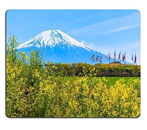 luxlady Alfombrillas de goma natural imagen ID 30898527Monte Fuji con caña de banners de colores y aceite de colza Campo de flores