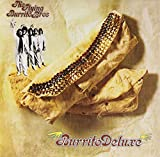 Songtexte von The Flying Burrito Brothers - Burrito Deluxe
