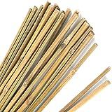 Pllieay Estacas de bambú Gruesas Naturales Estacas de jardín Bastones de bambú para Soporte de Plantas, 40CM