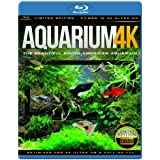 AQUARIUM 4K - The Beautiful South American Aquarium
