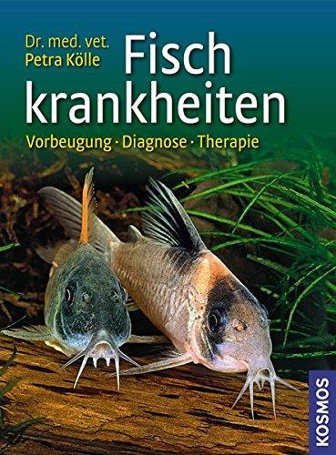 Fischkrankheiten: Vorbeugung, Diagnose, Therapie