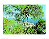 1art1 35873 Claude Monet - Landscape At Bordighera Poster Kunstdruck 50 x 40 cm