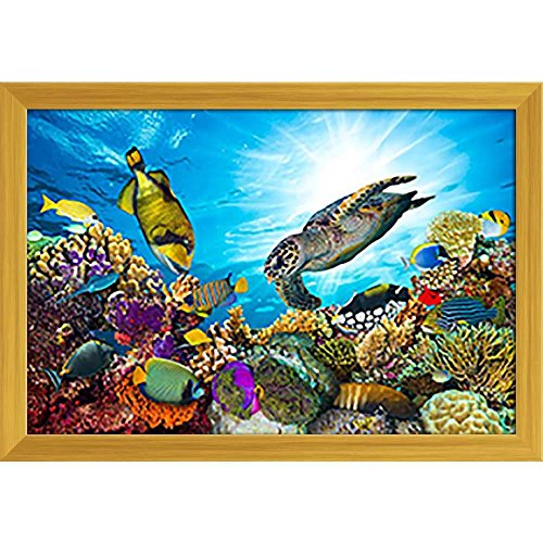 Pitaara Box Coral Reef with Fishes & Sea Turtle Canvas Painting Golden Frame 23.5 X 16Inch - Home Essentials Reef