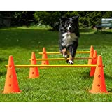 Bild: Dog Agility 3er Set PylonenHürden  38 cm