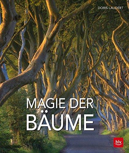 Magie der Bäume (Mediterrane Wildblumen)