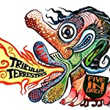 Best Tribulus - Tribulus Terrestris Review