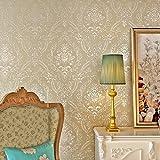 Hanmero Fototapete Vliestapete mit Papier Barock Tapete Vergolden mit Glanz der Perle und Seide 10*0.53M Hell-Braun