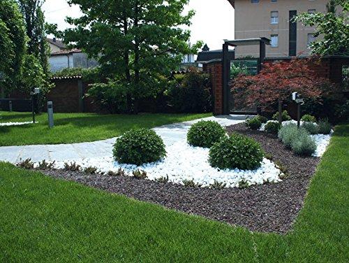 4 sacchi da 25kg ciottoli di marmo bianco carrara 40 60 mm for Aiuole giardino con sassi