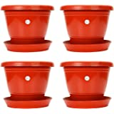 Kraft Seeds Plastic Planter with Bottom Plate, Red, 7.5-inch , Pack of 4