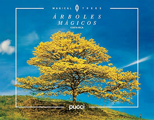 costa-rica-magical-trees