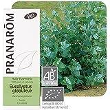 Pranarôm Bio Essential Oil Globular Eucalyptus 10ml by Pranarôm