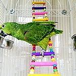 Rope Ladder Rainbow Bridge Bird Toy 27 Inch 7