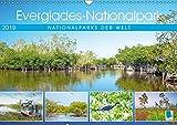 Everglades Nationalpark in Florida (Wandkalender 2019 DIN A3 quer): Zauberhafte Naturschauspiele im Süden der USA (Monatskalender, 14 Seiten ) (CALVENDO Orte)