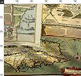 Vintage, Landkarten, Landkarte, In Großem Maßstab