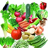 good01 200pcs Semi Di Ortaggi Misti Semi Di Ortaggi Bonsai In Vaso Nutriente Cortile Giardino Piante Da Tetto Semi Di Verdure