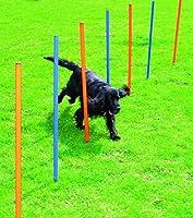 pawise 11431Agility Slalom Kit de tringles Baguettes Obstacles d'entraînement pour chien + Sac, Lot de 12