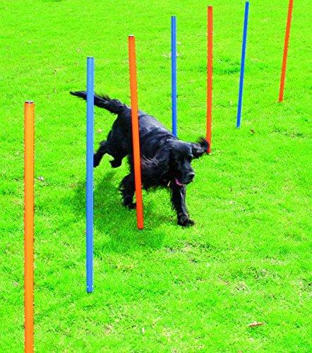 Pawise 11431 Agility Slalomstangen Hunde Trainingshürden Stäbe-Set + Tasche, 12 Stück