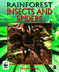 Insects and Spiders (Rainforests)
