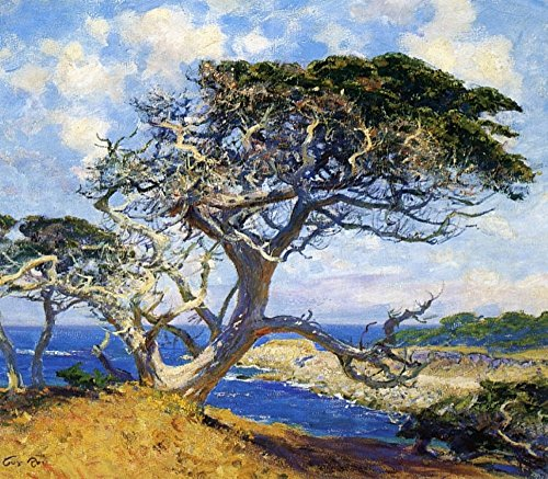 Das Museum Outlet-Monterey Cypress, gespannte Leinwand Galerie verpackt. 29,7x 41,9cm