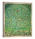 Gerahmtes Bild von Gustav Klimt Apfelbaum I, Kunstdruck im hochwertigen handgefertigten Bilder-Rahmen, 70x70 cm, Silber Raya