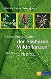 Kleine Enzyklopädie der essbaren Wildpflanzen. 1000 Pflanzen tabellarisch, mit 300 Farbfotos