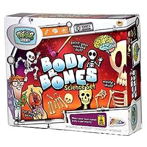 "Grafix - Kit Scientifique ""Weird Science Body And Bones"" Création Squelette Humain Corps Os"