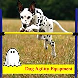 Generic Pet Dog Jumps Training Agility Equipment Outdoor Games Agility Exercise Jump Obedience Training