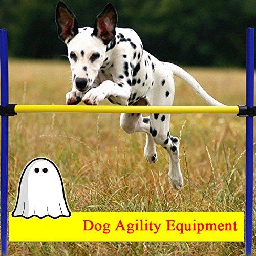 Bazaar Pet Hund springt-Spiele Plein Air von Ausbildung Erstausrüster Agilität Agilität Übung Ausbildung Sprung von Gehorsam