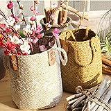 GEZICHTA natürlicher gewebter Korb aus Seegras Stroh Korb mit Griffen für Aufbewahrung, Wäsche, Picknick, Blumentopf, Blumentopf Vase, Papierkorb, und Beach Bag, weiß, 16 * 17 * 23cm