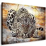 Bilder Kunstdrucke / Boikal / Bild mit Keilrahmen Raubkatzen, Jaguar, Leopard, Panther 120x80 cm xxl.165