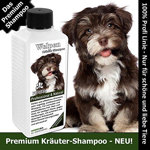 Kräutershampoo Trockenes Haar (PURITAL Welpen-Shampoo - Profi Hunde-Shampoo für Welpen - Kräuter-Shampoo Premium - Sehr ergiebiges Super-Konzentrat)