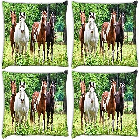 """Snoogg varietà di cavalli stampa confezione da 4 cuscini 40,64 40,64 cm x 16 x (16"""")-Federa per cuscino"""