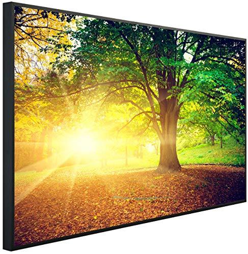 InfrarotPro | Infrarotheizung 600 Watt | Bildheizung 100x60x3 cm | Made in Germany | Geprüfte Technik | Ultra-HD Auflösung | (Herbstzeit im Wald)