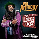 The Lock and the Key (Remix by Manudigital)