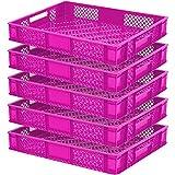 5x Eurobehälter/Bäckerkiste, LxBxH 600 x 400 x 90 mm, 15 Liter, pink, lebensmittelecht